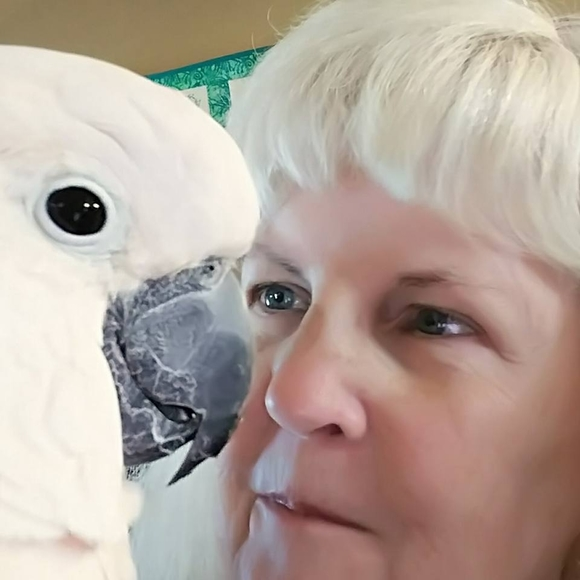Meet your Posher, Gail